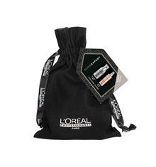 L'Oréal Professionnel Silver 10 in 1 Gift Set