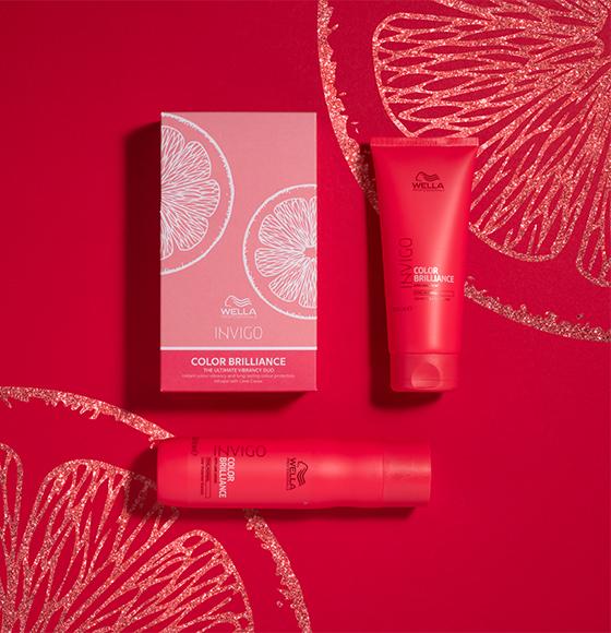 Wella Invigo Colour Brilliance Xmas Gift Set